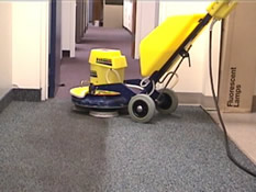Commercial Carpet Cleaning Olympia