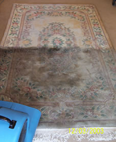 Our Methods Grossbusters Carpet Cleaning In Lacey Dupont